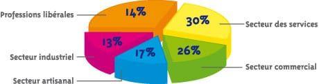Diagramme de la répartition des entreprises par secteurs d'activités