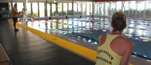 bassin-piscine-begles