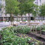 Jardins partagés Thorez