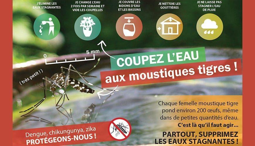 Campagne-moustiques